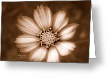 Silent Petals Greeting Card
