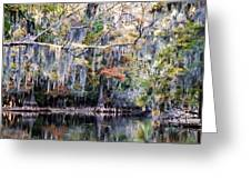 Silent Reflection Greeting Card