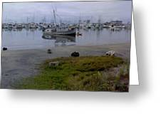 Silent Waters Greeting Card