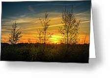 Silhouette By Sunset Greeting Card
