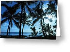 Silhouette Of Palms Greeting Card