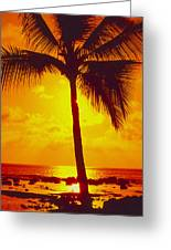 Silhouetted Palm Greeting Card