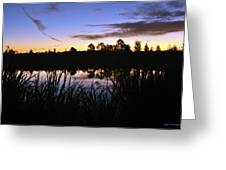 Silhouettes Of Sunrise Greeting Card
