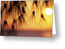 Silhouettes Greeting Card by Rita Ariyoshi - Printscapes