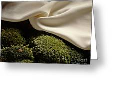 Silk And Moss Greeting Card