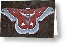 Silk Moth Greeting Card