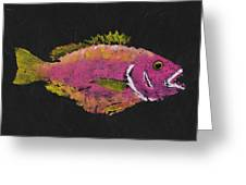 Silky Snapper Greeting Card