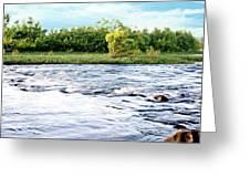 Silky Susquehanna River Greeting Card