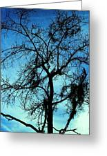 Sillouette 3 Greeting Card