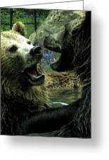 Silly Bears Greeting Card