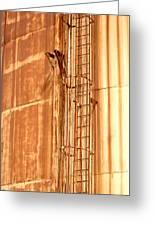 Silo Ladder Greeting Card