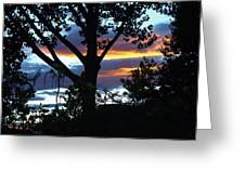 Silohuettes Of Trees Greeting Card