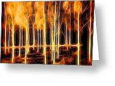 Silver Birches Flaming Abstract  Greeting Card