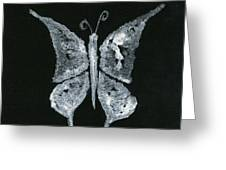 Silver Buterfly Greeting Card