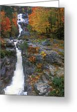 Silver Cascade In Autumn Greeting Card