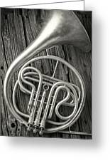 Silver French Horn Greeting Card