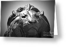 Silver Lion Greeting Card