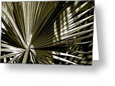 Silver Palm Greeting Card