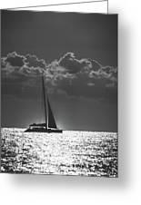 Silver Sea Sailboat Delray Beach Florida Greeting Card