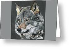 Silver Shadow Greeting Card