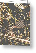 Silver Sports Greeting Card
