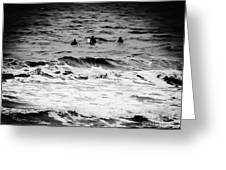 Silver Surfers Greeting Card