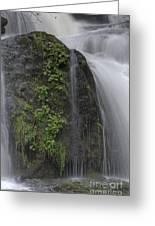 Silverdale Falls Greeting Card