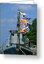 Silversides Flags Greeting Card