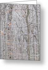Silviculture Greeting Card