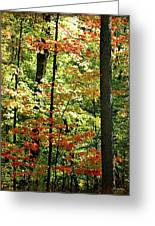 Simply Autumn Greeting Card