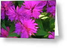 Simply Soft Pink Petals Greeting Card