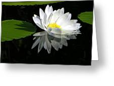 Simply White On Black Greeting Card