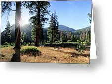 Simpson Meadow - Sierra Greeting Card