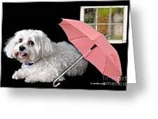 Singing In The Rain Greeting Card by Starlite Studio