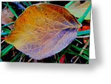 Single Brown Leaf Greeting Card