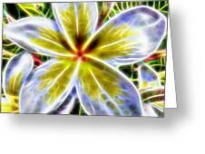 Single Fractal Frangipani Greeting Card