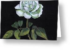 Single White Rose Greeting Card