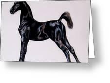 Sir Clarence Ronald - Saddlebred Colt Greeting Card