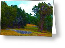 Sister's Hill Country Backyard Greeting Card