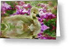 Sitting Among The Lilacs Greeting Card