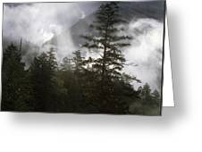 Siuslaw National Forest Greeting Card