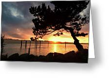 Siuslaw River Autumn Sunset Greeting Card