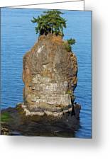 Siwash Rock By Stanley Park Greeting Card