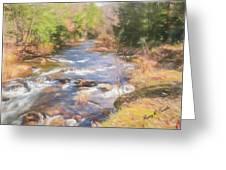 Six Mile Run Premier Trout Stream. Greeting Card