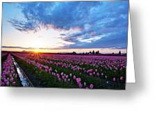 Skagit Floral Sunset Greeting Card