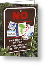 Skateboarder Commentary Greeting Card