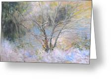 Sketch Of Halation Effect Through Trees Greeting Card