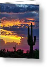 Skies Aglow In Arizona  Greeting Card