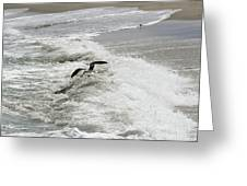 Skimmer And Waves Greeting Card