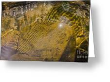 Skin River Greeting Card